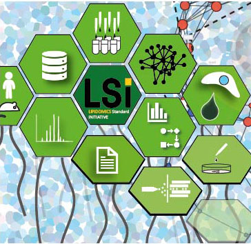 Great our Lipidomics Standard Initiative manuscript (LSI) is out! Thanks to all people and groups how supported this endeavor, which encourages researchers to engage with the Lipidomics Standards Initiative to take lipidomics research to the next level. https://lipidomics-standards-initiative.org/ https://rdcu.be/bMhrJ